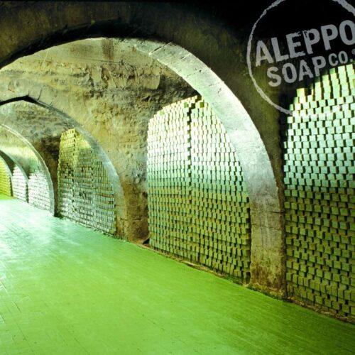 Aleppozeep van Tadé